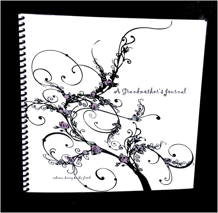 the grandmothers journal (Copy)